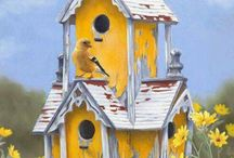 Birdhouses & other houses