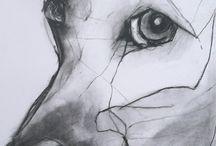 Animal GCSE Art