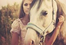 med hester
