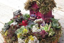 Casette e giardini in miniatura