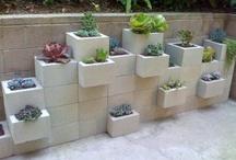 Tuine ontwerp