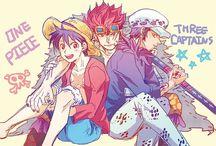 3 Captains
