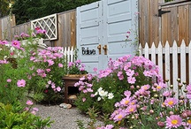 backyard / by Abby Mims