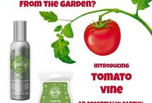 Tomato vine / Scents for the home, office