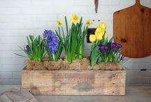 planter build for eco fair