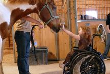 Therapeutic Riding & Hippotherapy / by Erin Jones