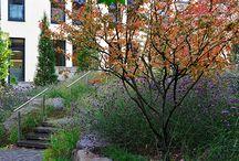 Garten Berg