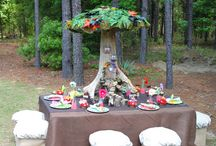 Fairy whimsical party