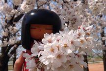Sakura / Design and Quality iseya of Japan