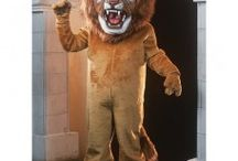 Lion Mascots Costume / Our high quality mascot costumes come in vivid shapes at affordable prices. What makes our lion mascot costume unique is the realistic look of the costume and attention to detail
