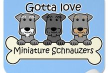 "Cute Mini Schnauzer ""stuff"" / T-shirts, signs, paintings - anything goes if it has to do with my precious minis! :)"