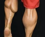 Människans Muskel.. Hela kroppen