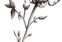 Drawings and tattoos of roses n' flowers