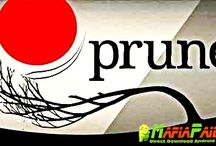 Prune Apk + Mod Skip for Android