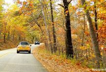 Get in the fall spirit and share pictures of you and your MINI celebrating the season with the #MINIFoliage #PhotoChallenge. - photo from miniusa