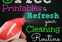 Organized Household (Routines & Systems):