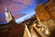 Vitoria / Vitoria-Gasteiz, capital de Euskadi, Capital Verde Europea 2012 y Capital Nacional de la Gastronomía 2014, le invita a pasear por la historia en su Casco Medieval,  perderse por los parques que forman el Anillo Verde y darse un respiro probando las delicias de la gastronomía vasca regada por exquisitos caldos de Rioja y Txakolí de Álava.