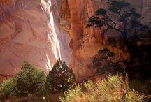 Places to visit in Utah / by Marti Williams