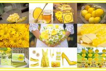 Pretty Yellow Parties