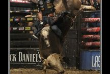 Inspire by Fire / Bull riding inspiration