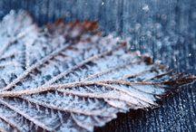 Autumn/wintertime / Huis winterklaar Maken
