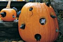 Fall Holidays / Thanksgiving, Halloween, Fall colors etc... / by Cris Torchia