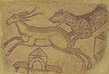 A Chazen Bestiary / Intersting animals at the CHazen