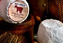 QUESOS CANTABROS / Cheese of spain cantabria