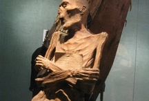 The Mummy Museum