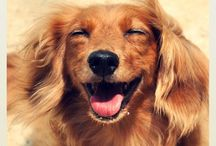 smile:-)