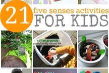 My 5 Senses