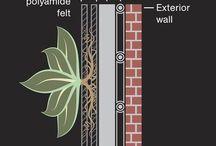 Növény fal