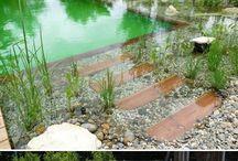 Bio bazén