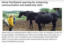 Experiential (visual) learning