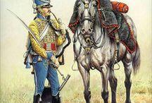 Napoleonic Wars :)