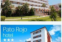 Hotel Pato Rojo / Disponemos del Hotel Pato Rojo. ¿Ganas de playa y piscina a solo 100 metros de la playa? Ésta es tu mejor opción.