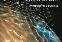 I libri di Avanguardie / Storie di viaggi e di esplorazioni, storie di animali di grotta, storie vere e storie di fantasia. Insomma: storie