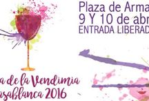 Vendimia 2016 / Vendimia en Chile