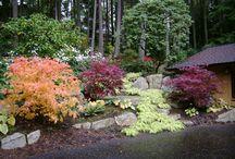 Pacific Northwest Landscape