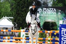 !~FEI Nations Cup~!