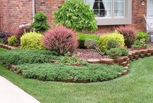 front landscaping / by Mary Smith