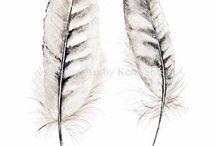 Feather and herringbone