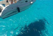 Discovering Lampedusa § Alla scoperta di Lampedusa