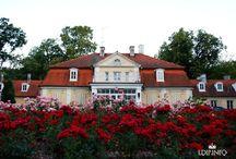 Kutno - Pałac Gierałty