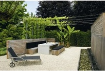 Outdoor spaces / Landscaping ideas / by Sue Chamberland de Moissac