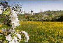 Bayern - Fototapete Merian / Merian Bildservice zeigt Motive, die als Fototapete gedruckt werden können. Inspirierende Raumbilder geben den Fototapeten einen Extra-schliff. Bayern - Das schönste Bundesland im Süden von Deutschland