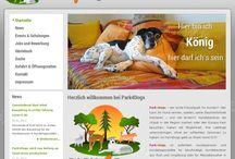 My Web / Websites by Digitest & Co - http://www.digitest.net