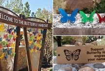 Mother's Day Gift Ideas / Commemorative butterflies, memberships, gift shop items and more. The Springs Preserve has something for every mom for Mother's Day!  / by Springs Preserve