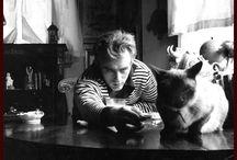 Feline Lovers Unite / I love people who love cats.