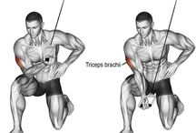 Trening - triceps
